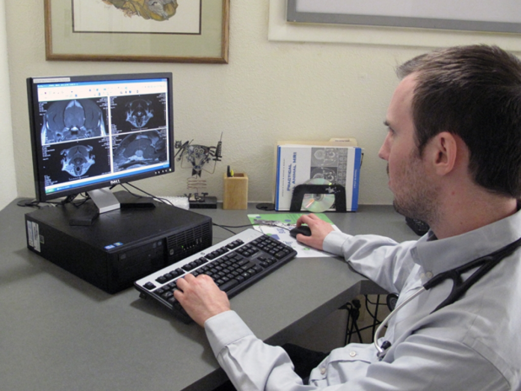 Neurology resident Dr. Erich Spoor reviews images during a workup.